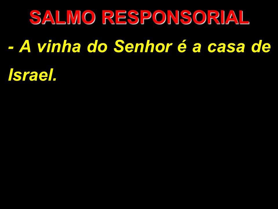 SALMO RESPONSORIAL - A vinha do Senhor é a casa de Israel.
