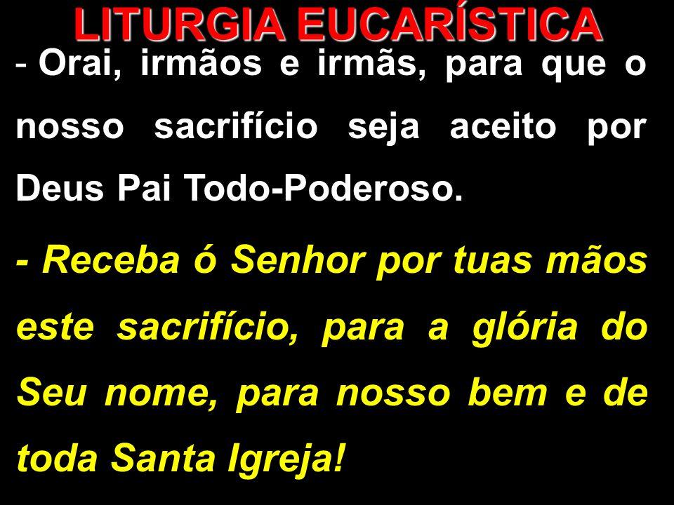 - Orai, irmãos e irmãs, para que o nosso sacrifício seja aceito por Deus Pai Todo-Poderoso.