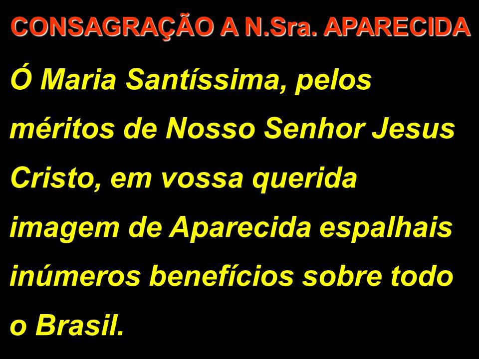 Ó Maria Santíssima, pelos méritos de Nosso Senhor Jesus Cristo, em vossa querida imagem de Aparecida espalhais inúmeros benefícios sobre todo o Brasil.