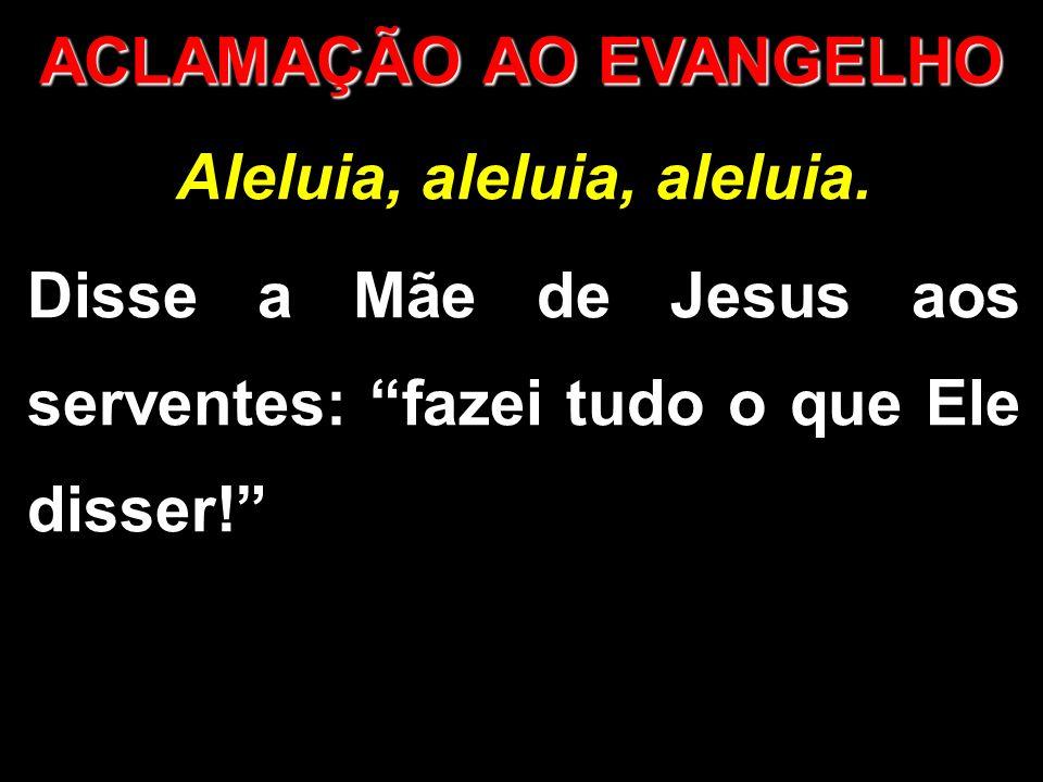 """Aleluia, aleluia, aleluia. Disse a Mãe de Jesus aos serventes: """"fazei tudo o que Ele disser!"""" ACLAMAÇÃO AO EVANGELHO"""