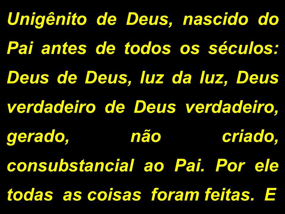 Unigênito de Deus, nascido do Pai antes de todos os séculos: Deus de Deus, luz da luz, Deus verdadeiro de Deus verdadeiro, gerado, não criado, consubs