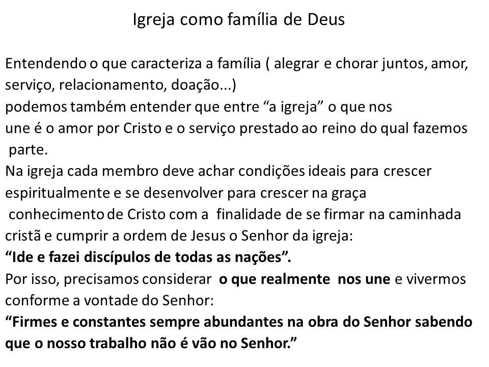Igreja como família de Deus Entendendo o que caracteriza a família ( alegrar e chorar juntos, amor, serviço, relacionamento, doação...) podemos também