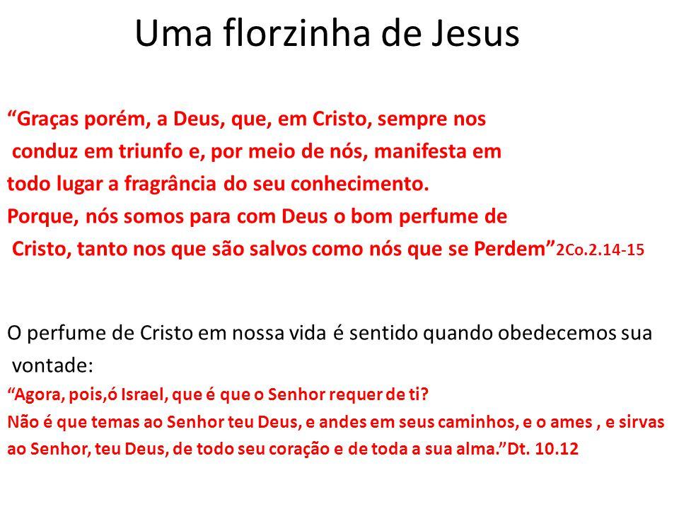 """Uma florzinha de Jesus """"Graças porém, a Deus, que, em Cristo, sempre nos conduz em triunfo e, por meio de nós, manifesta em todo lugar a fragrância do"""