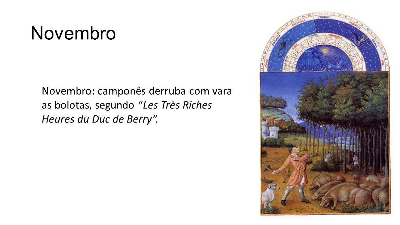 "Novembro Novembro: camponês derruba com vara as bolotas, segundo ""Les Très Riches Heures du Duc de Berry""."