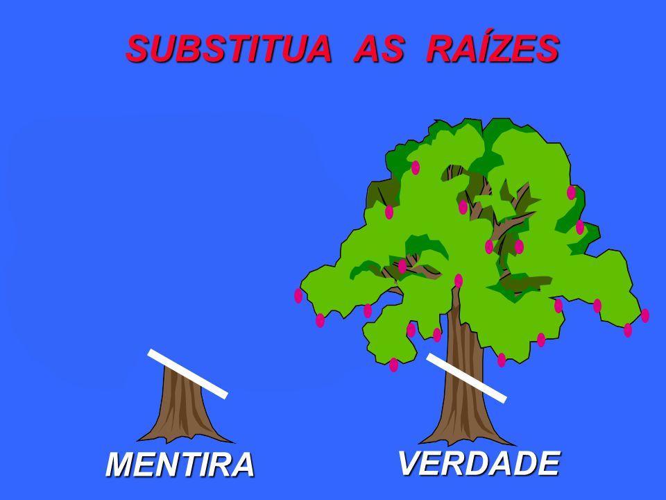 MENTIRA VERDADE