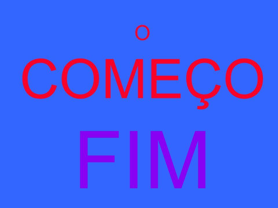 O COMEÇO FIM