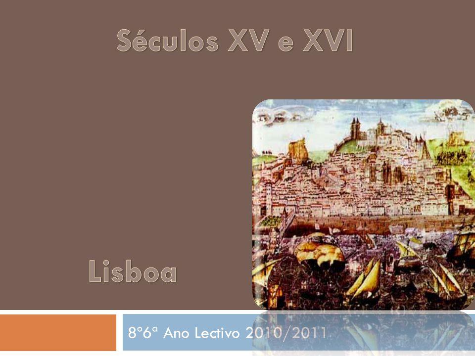 8º6ª Ano Lectivo 2010/2011