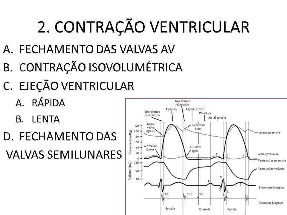 2. CONTRAÇÃO VENTRICULAR A.FECHAMENTO DAS VALVAS AV B.CONTRAÇÃO ISOVOLUMÉTRICA C.EJEÇÃO VENTRICULAR A.RÁPIDA B.LENTA D.FECHAMENTO DAS VALVAS SEMILUNAR