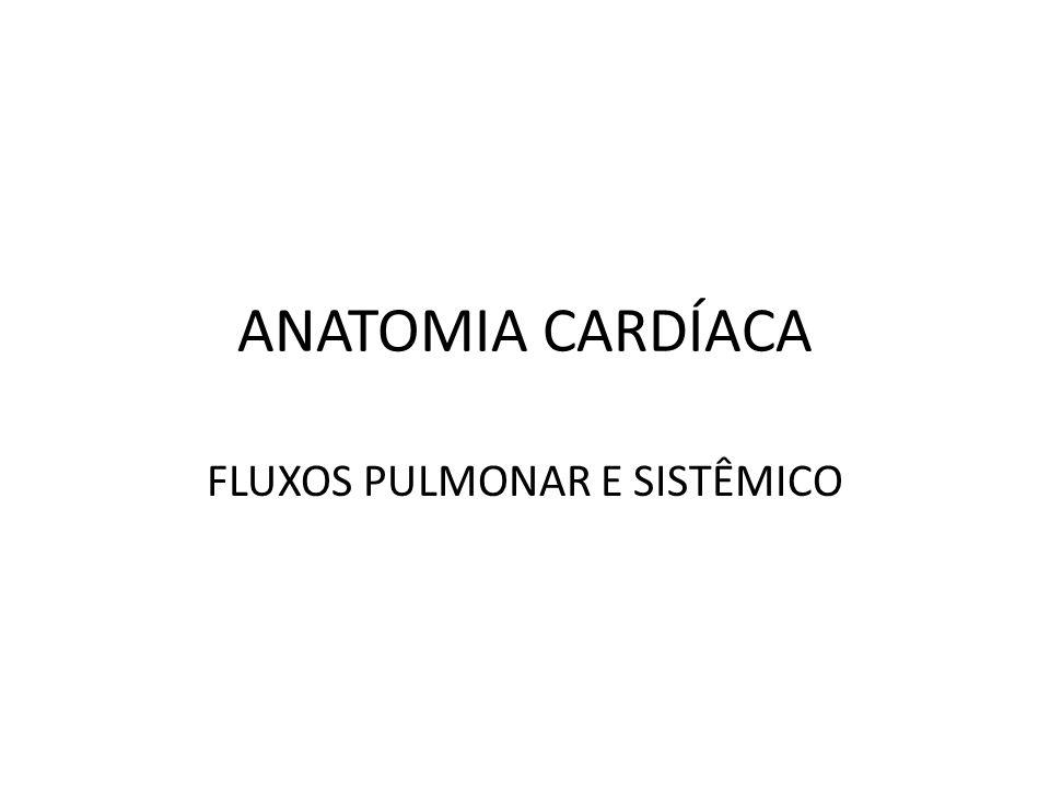 ANATOMIA CARDÍACA FLUXOS PULMONAR E SISTÊMICO