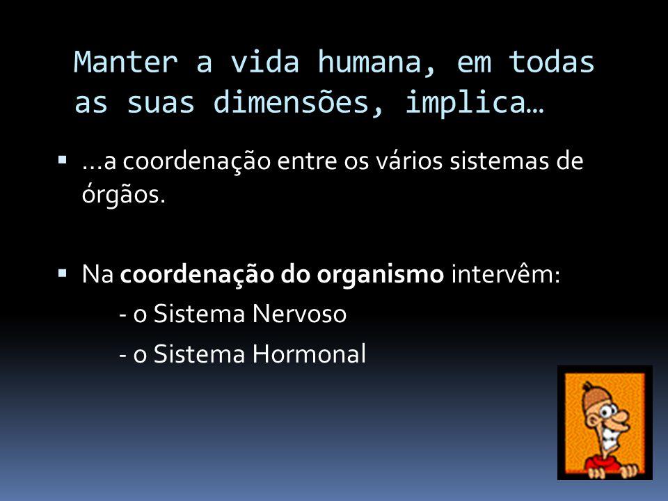 Manter a vida humana, em todas as suas dimensões, implica…  …a coordenação entre os vários sistemas de órgãos.  Na coordenação do organismo intervêm
