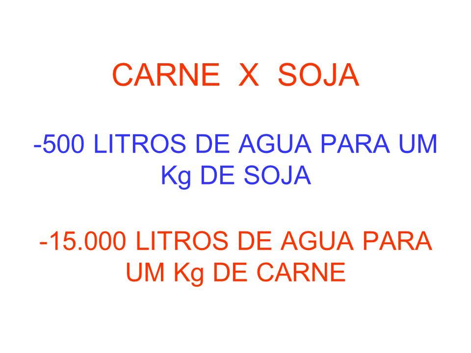 CARNE X SOJA -500 LITROS DE AGUA PARA UM Kg DE SOJA -15.000 LITROS DE AGUA PARA UM Kg DE CARNE