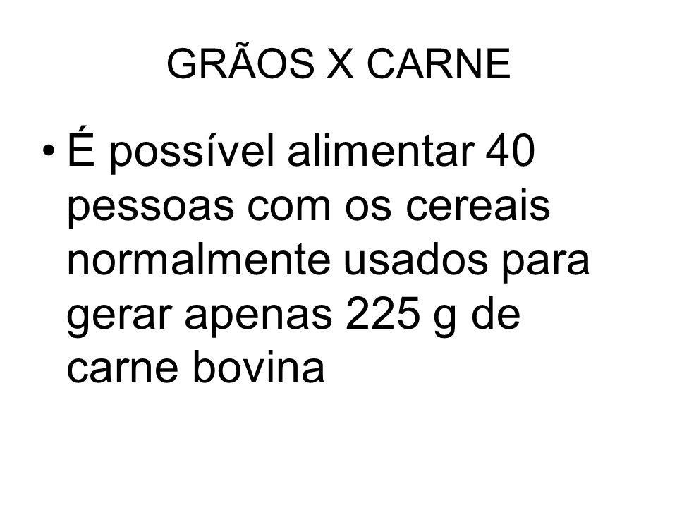 GRÃOS X CARNE É possível alimentar 40 pessoas com os cereais normalmente usados para gerar apenas 225 g de carne bovina