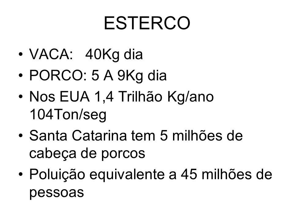 ESTERCO VACA: 40Kg dia PORCO: 5 A 9Kg dia Nos EUA 1,4 Trilhão Kg/ano 104Ton/seg Santa Catarina tem 5 milhões de cabeça de porcos Poluição equivalente