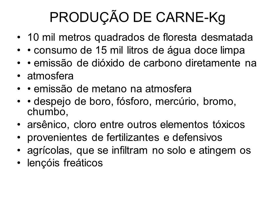 PRODUÇÃO DE CARNE-Kg 10 mil metros quadrados de floresta desmatada consumo de 15 mil litros de água doce limpa emissão de dióxido de carbono diretamen