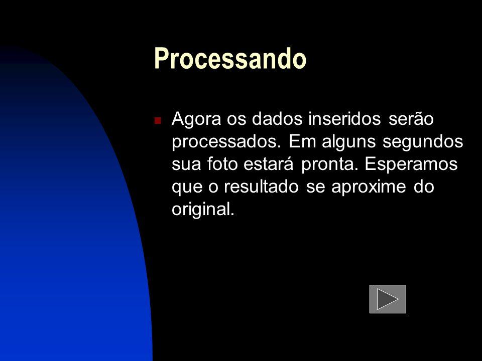 Processando Agora os dados inseridos serão processados.
