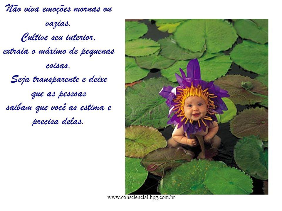 www.consciencial.hpg.com.br Não viva emoções mornas ou vazias. Cultive seu interior, extraia o máximo de pequenas coisas. Seja transparente e deixe qu