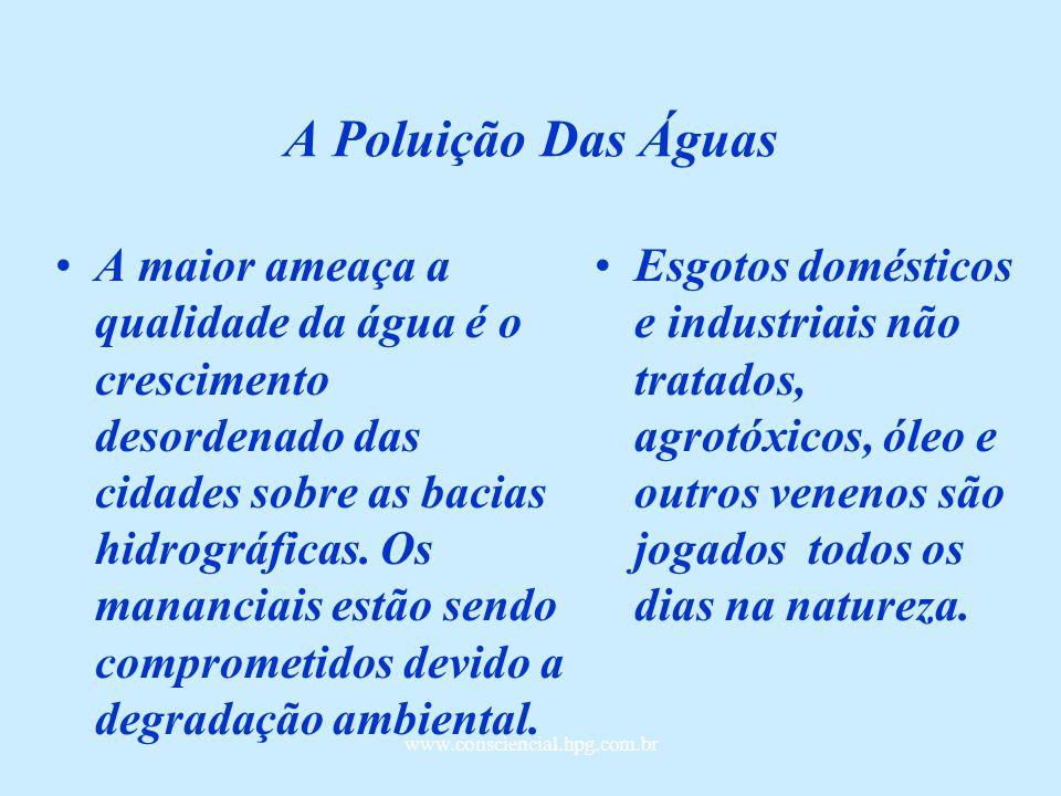 www.consciencial.hpg.com.br A Poluição Das Águas A maior ameaça a qualidade da água é o crescimento desordenado das cidades sobre as bacias hidrográficas.