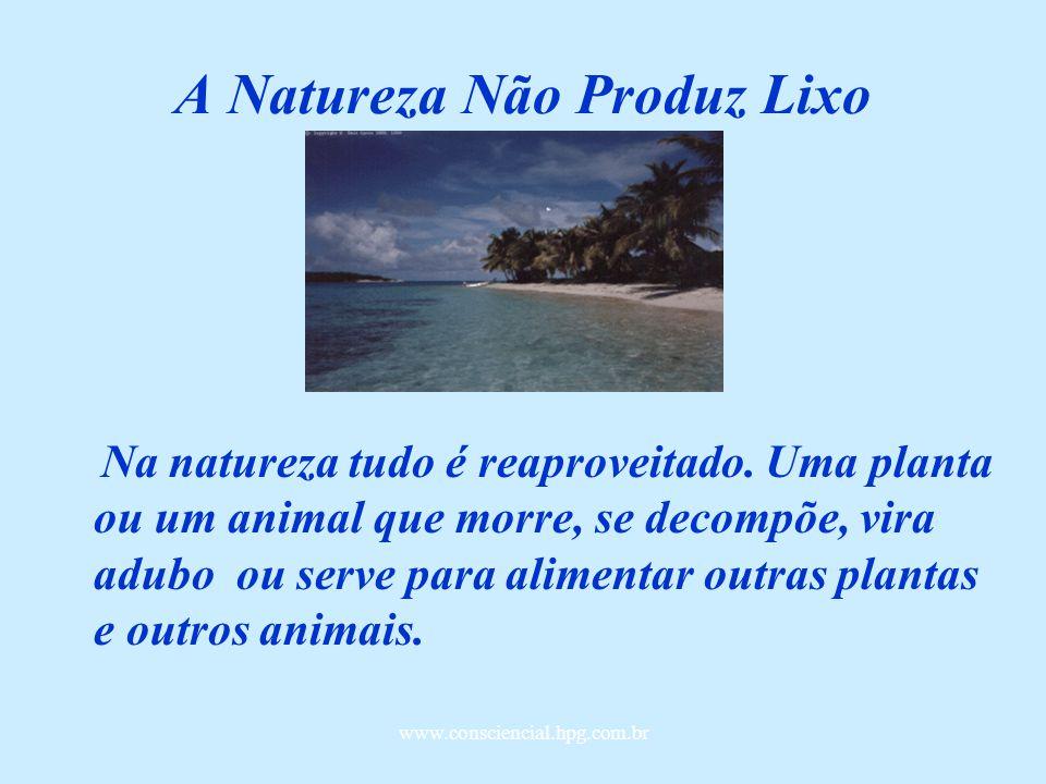 www.consciencial.hpg.com.br A Natureza Não Produz Lixo Na natureza tudo é reaproveitado.
