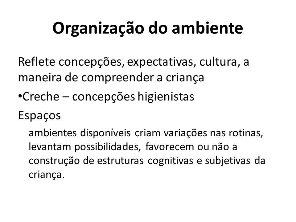 Organização do ambiente Reflete concepções, expectativas, cultura, a maneira de compreender a criança Creche – concepções higienistas Espaços ambiente