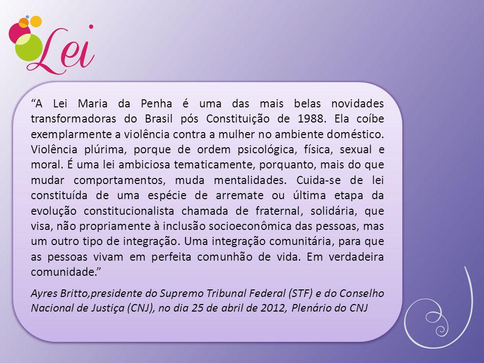 """""""A Lei Maria da Penha é uma das mais belas novidades transformadoras do Brasil pós Constituição de 1988. Ela coíbe exemplarmente a violência contra a"""