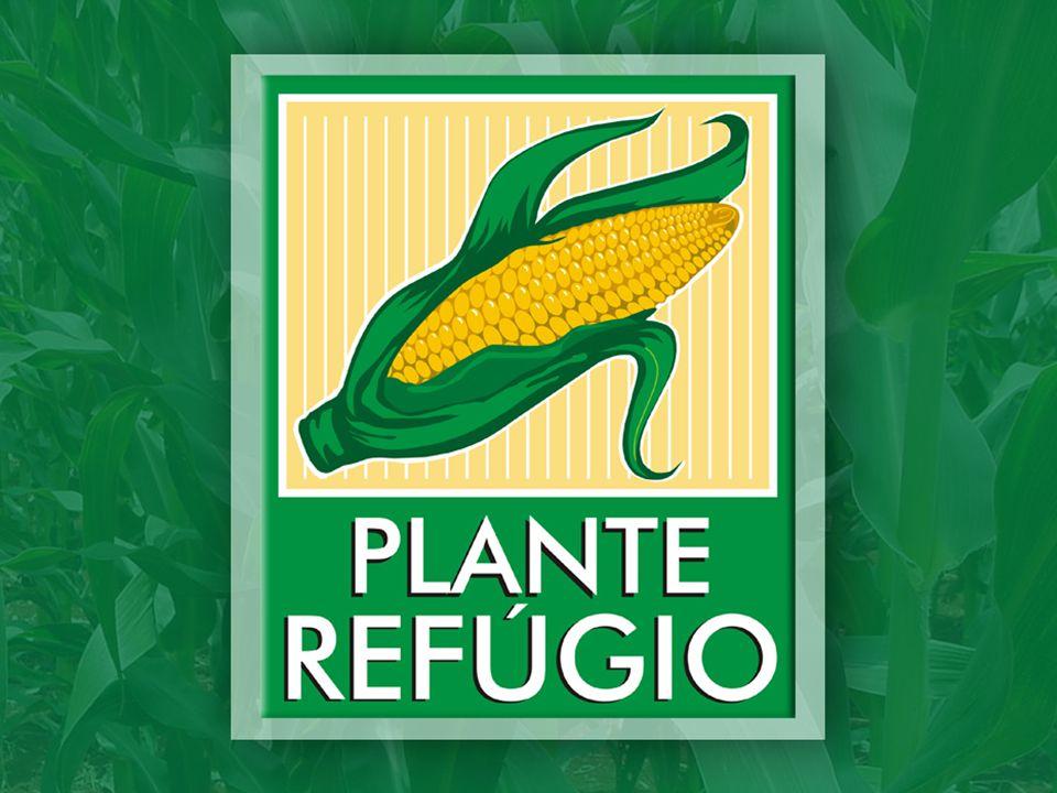 Programa Plante Refugio 2