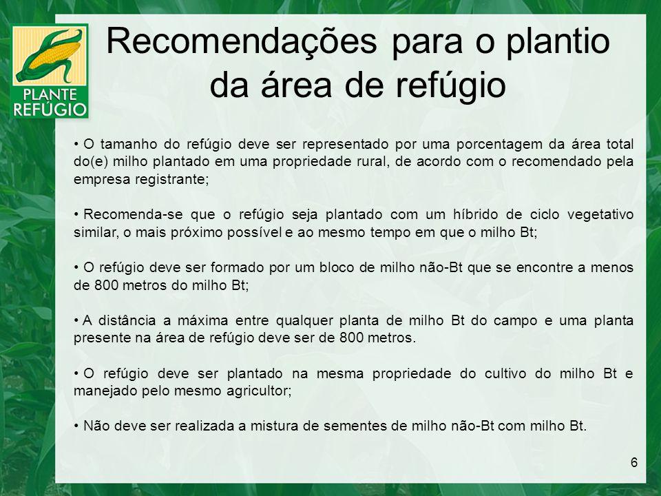 Recomendações para o plantio da área de refúgio 6 O tamanho do refúgio deve ser representado por uma porcentagem da área total do(e) milho plantado em