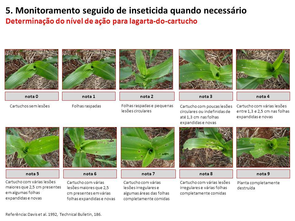 5. Monitoramento seguido de inseticida quando necessário Determinação do nível de ação para lagarta-do-cartucho nota 0nota 1nota 2nota 3nota 4 nota 5n
