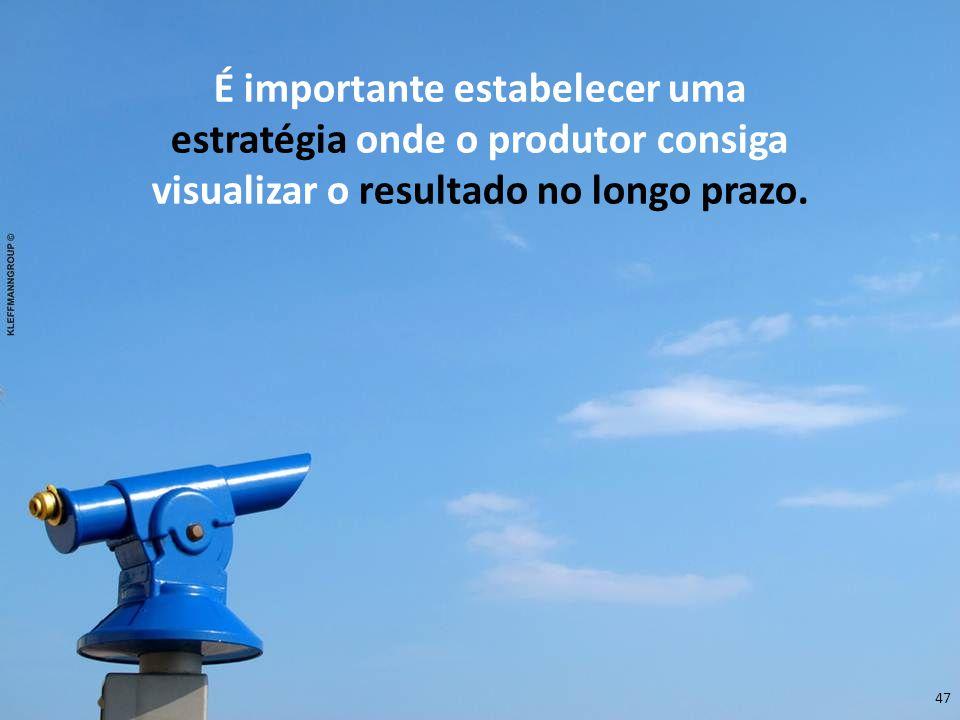 É importante estabelecer uma estratégia onde o produtor consiga visualizar o resultado no longo prazo.