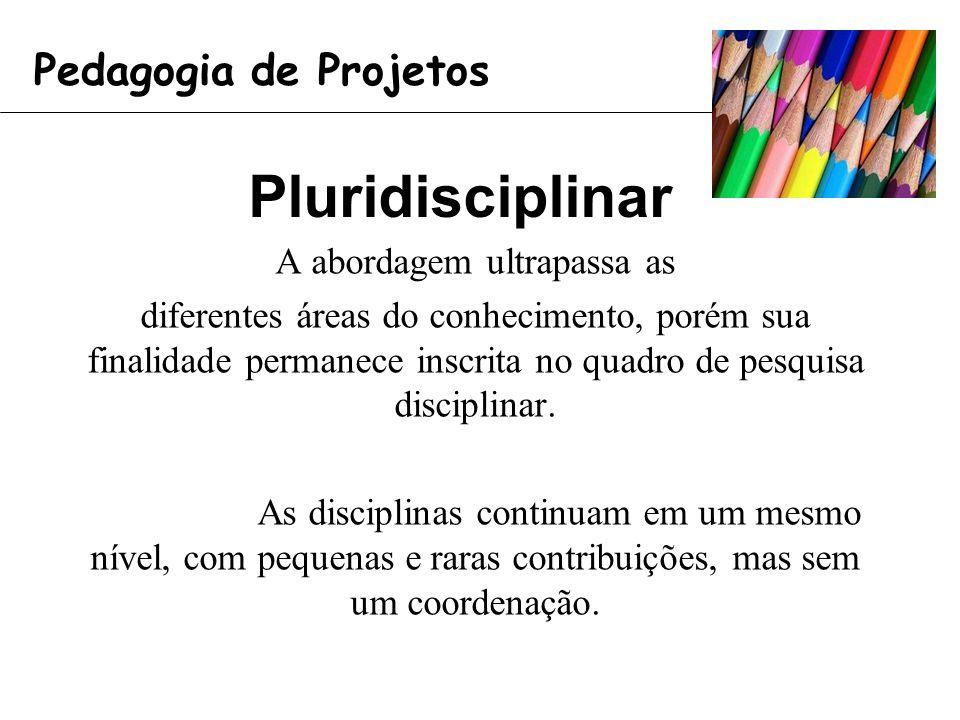 Pluridisciplinar A abordagem ultrapassa as diferentes áreas do conhecimento, porém sua finalidade permanece inscrita no quadro de pesquisa disciplinar.