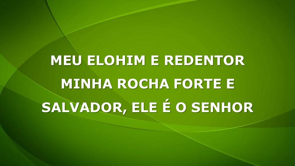 MEU ELOHIM E REDENTOR MINHA ROCHA FORTE E SALVADOR, ELE É O SENHOR