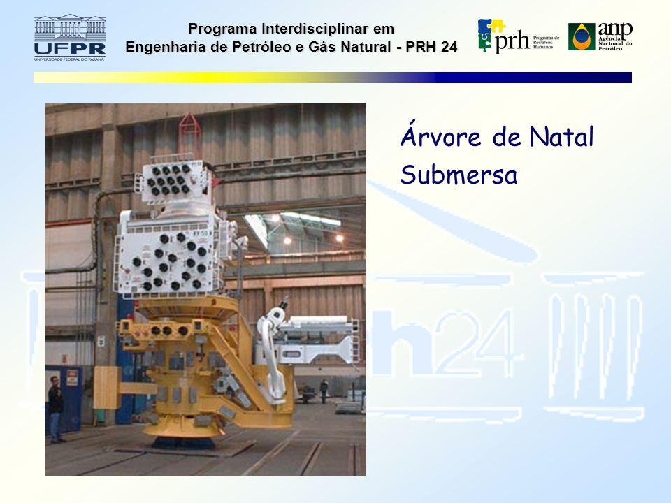 Programa Interdisciplinar em Engenharia de Petróleo e Gás Natural - PRH 24 Árvore de Natal Submersa