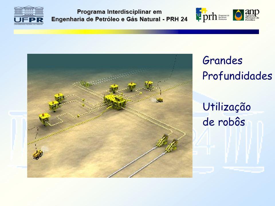 Programa Interdisciplinar em Engenharia de Petróleo e Gás Natural - PRH 24 Grandes Profundidades Utilização de robôs
