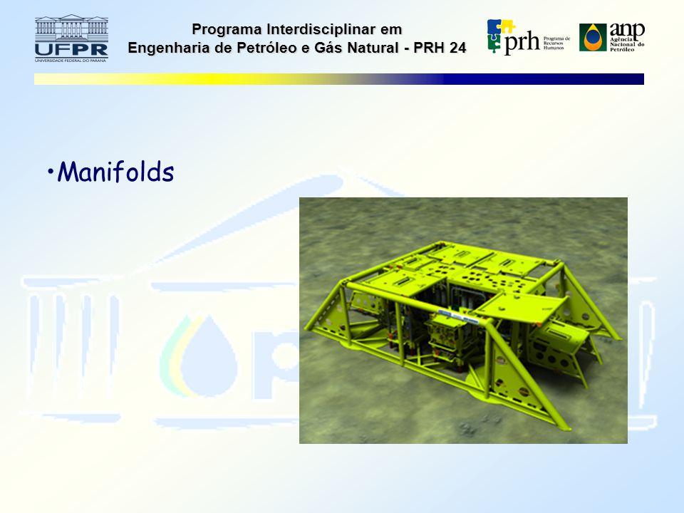 Programa Interdisciplinar em Engenharia de Petróleo e Gás Natural - PRH 24 Manifolds