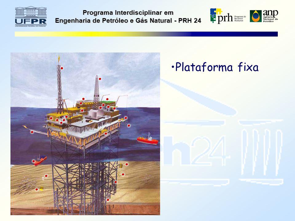 Programa Interdisciplinar em Engenharia de Petróleo e Gás Natural - PRH 24 Plataforma fixa
