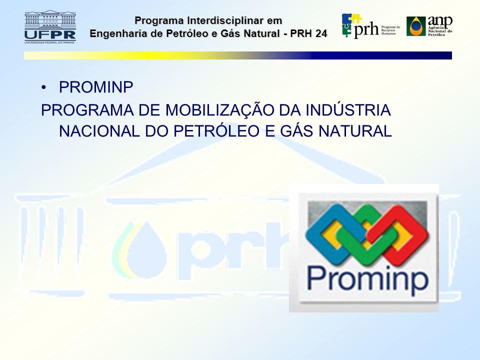 Programa Interdisciplinar em Engenharia de Petróleo e Gás Natural - PRH 24 PROMINP PROGRAMA DE MOBILIZAÇÃO DA INDÚSTRIA NACIONAL DO PETRÓLEO E GÁS NATURAL