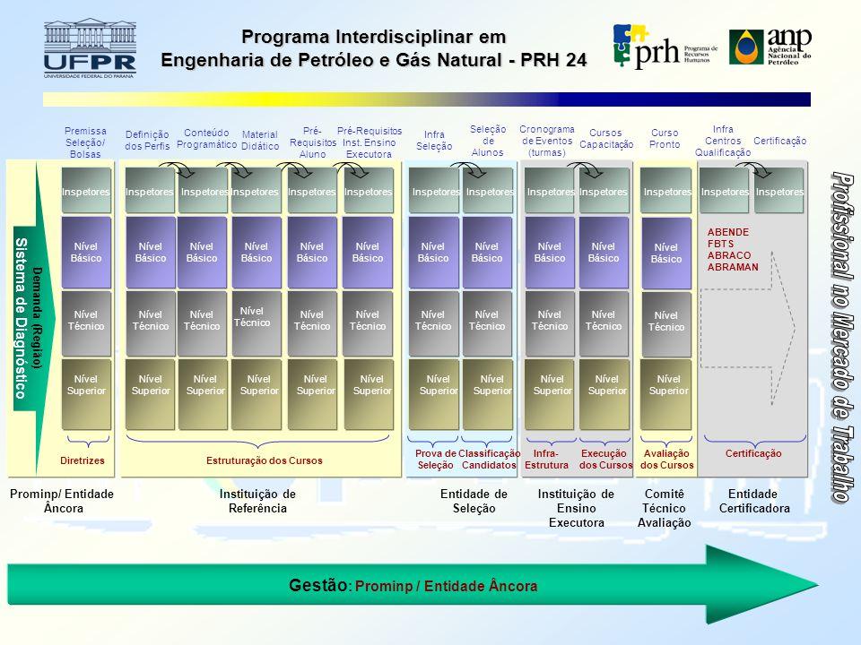 Programa Interdisciplinar em Engenharia de Petróleo e Gás Natural - PRH 24 Gestão : Prominp / Entidade Âncora Entidade Certificadora ABENDE FBTS ABRACO ABRAMAN Infra Centros Qualificação Certificação Inspetores Certificação Inspetores Premissa Seleção/ Bolsas Prominp/ Entidade Âncora Demanda (Região) Sistema de Diagnóstico Diretrizes Nível Superior Inspetores Nível Técnico Nível Básico Instituição de Referência Pré-Requisitos Inst.
