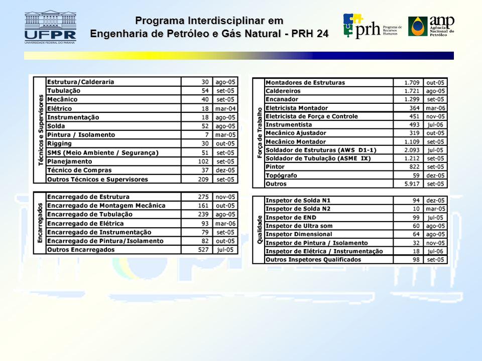 Programa Interdisciplinar em Engenharia de Petróleo e Gás Natural - PRH 24