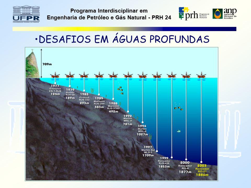 Programa Interdisciplinar em Engenharia de Petróleo e Gás Natural - PRH 24 DESAFIOS EM ÁGUAS PROFUNDAS