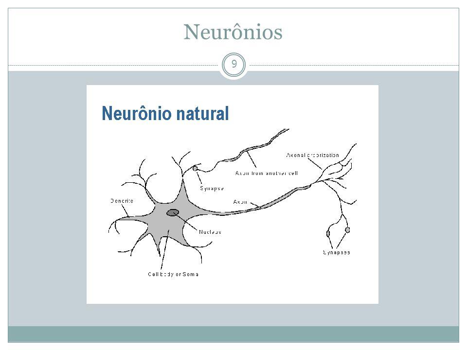 Neurônios 9