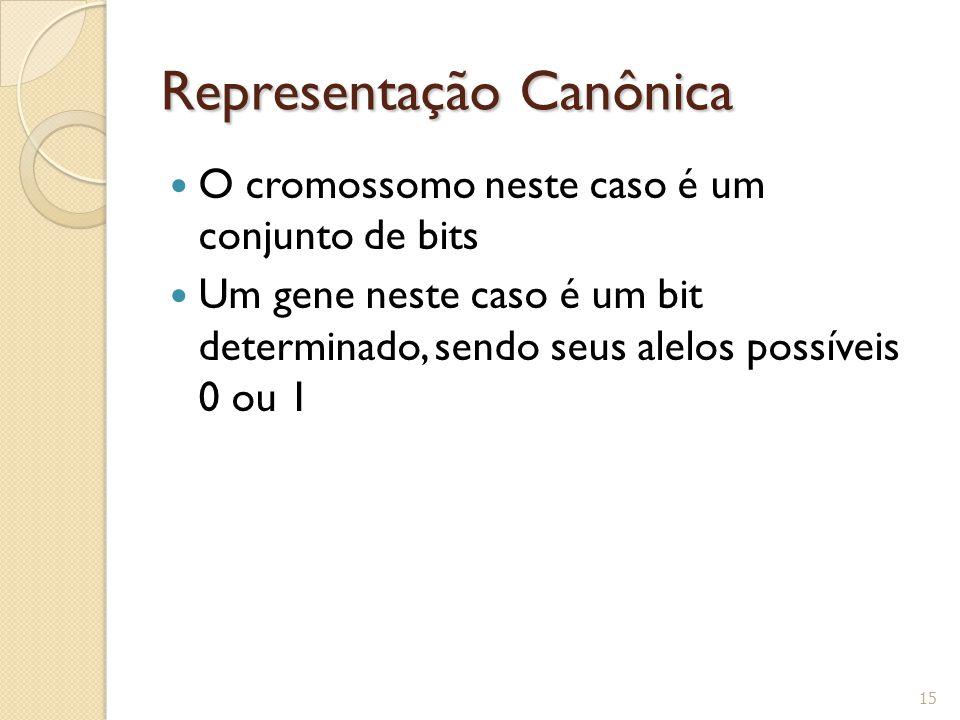 Representação Canônica O cromossomo neste caso é um conjunto de bits Um gene neste caso é um bit determinado, sendo seus alelos possíveis 0 ou 1 15