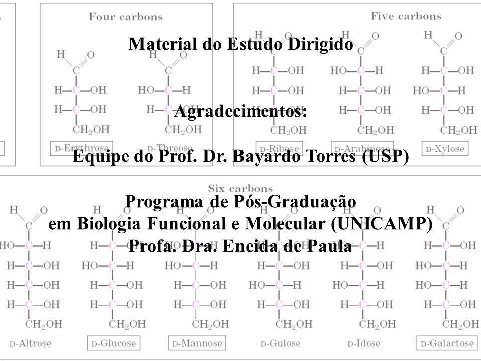 Material do Estudo Dirigido Agradecimentos: Equipe do Prof. Dr. Bayardo Torres (USP) Programa de Pós-Graduação em Biologia Funcional e Molecular (UNIC