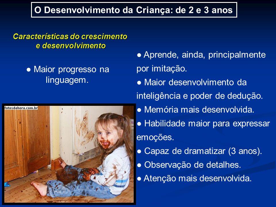 O Desenvolvimento da Criança: de 2 e 3 anos Características do crescimento e desenvolvimento ● Aprende, ainda, principalmente por imitação.