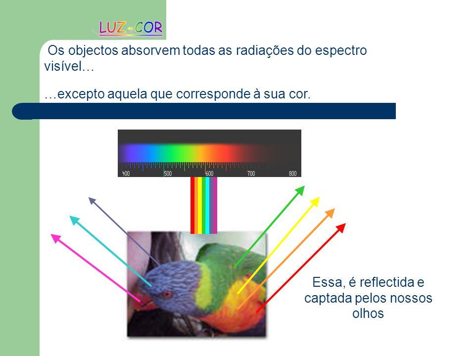 Os objectos absorvem todas as radiações do espectro visível… …excepto aquela que corresponde à sua cor. Essa, é reflectida e captada pelos nossos olho