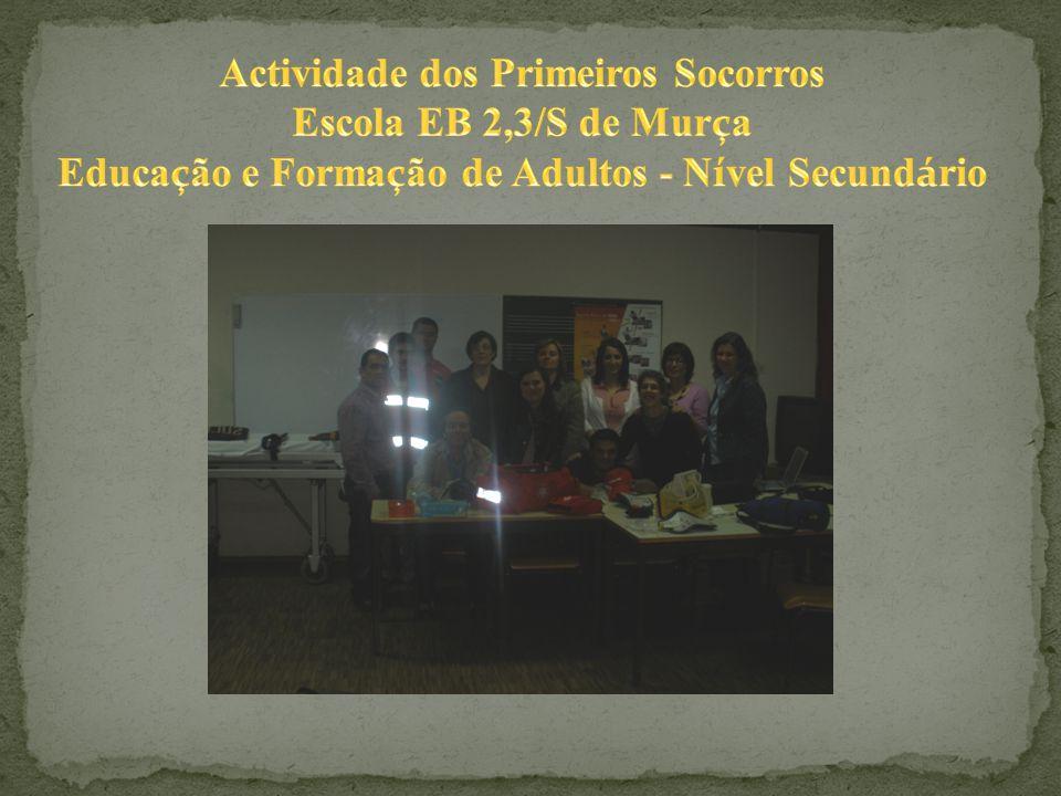 A Alfredina estava empolgada com todas as informações vindas do Bombeiro Luís, que insistentemente colocava outras questões.
