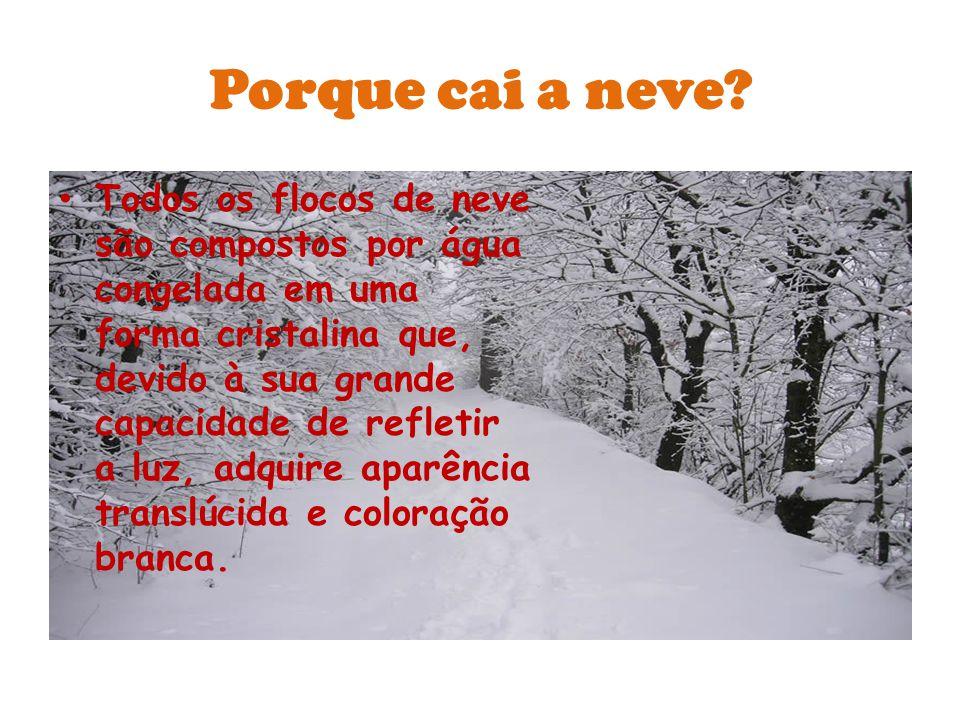 Neve A precipitação desses flocos ocorre com frequência nas regiões de clima frio e temperado do planeta Terra.