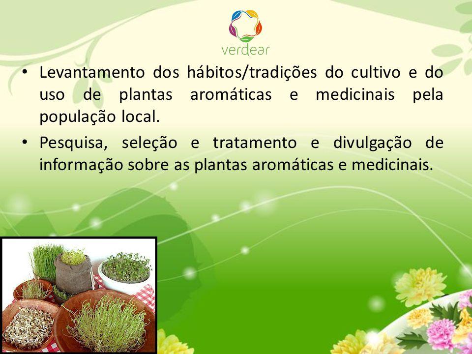 Levantamento dos hábitos/tradições do cultivo e do uso de plantas aromáticas e medicinais pela população local. Pesquisa, seleção e tratamento e divul