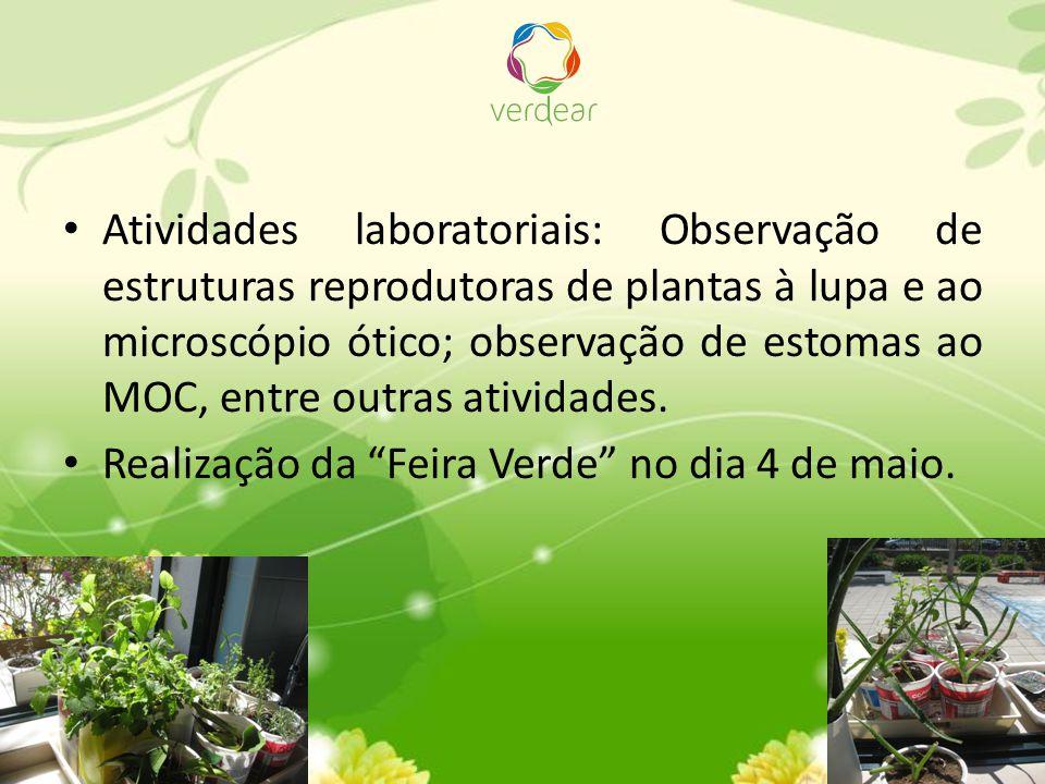 Atividades laboratoriais: Observação de estruturas reprodutoras de plantas à lupa e ao microscópio ótico; observação de estomas ao MOC, entre outras a