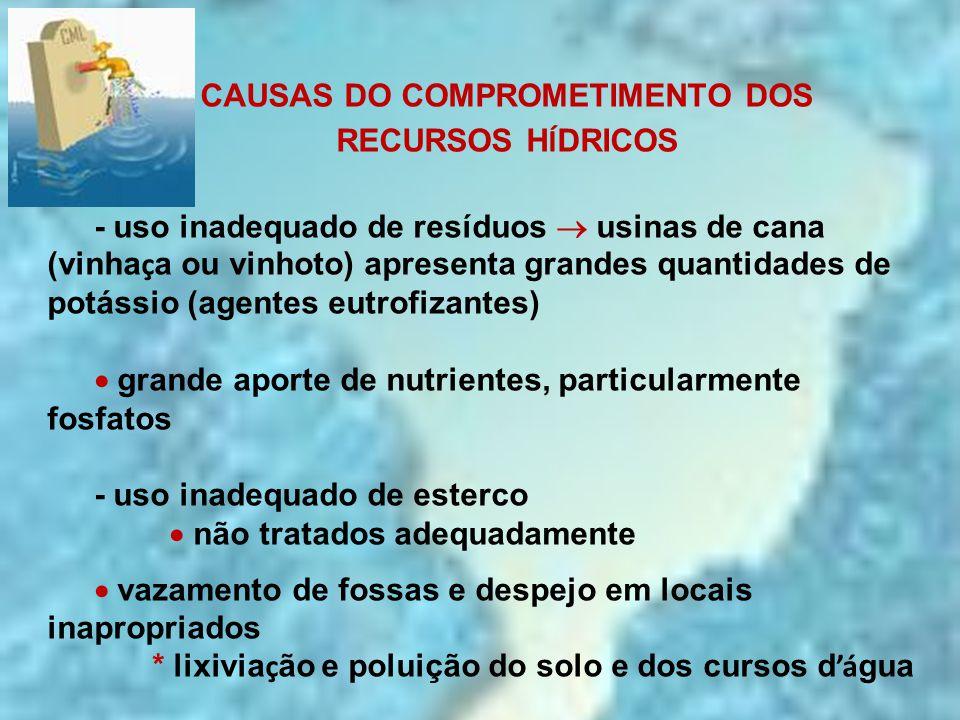 CAUSAS DO COMPROMETIMENTO DOS RECURSOS H Í DRICOS - uso inadequado de resíduos  usinas de cana (vinha ç a ou vinhoto) apresenta grandes quantidades d
