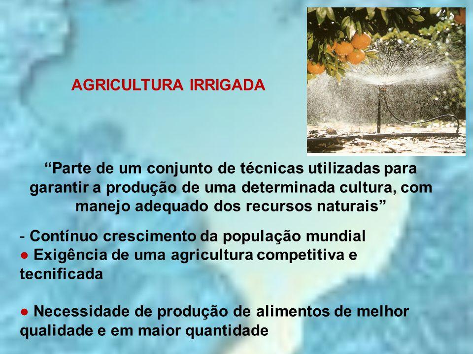 """AGRICULTURA IRRIGADA """"Parte de um conjunto de técnicas utilizadas para garantir a produção de uma determinada cultura, com manejo adequado dos recurso"""
