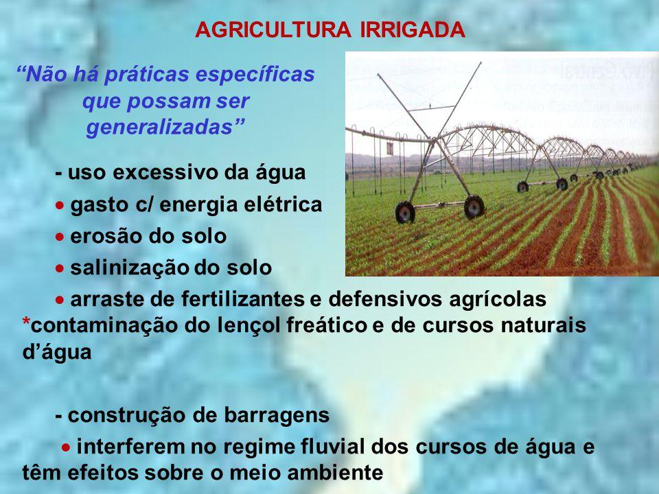 AGRICULTURA IRRIGADA - uso excessivo da água  gasto c/ energia elétrica  erosão do solo  salinização do solo  arraste de fertilizantes e defensivo